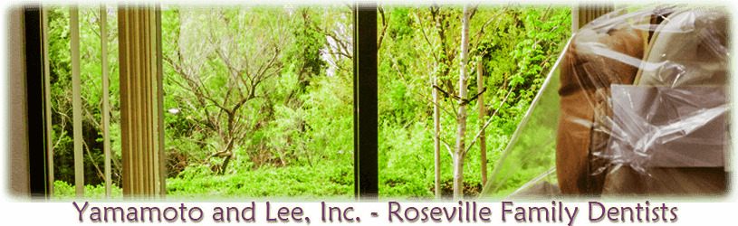 PNG file of view of garden from a dentist chair, Experience Gentle Family Dentistry From Our View, Yamamoto & Lee, Roseville Family Dentistry, Roseville CA